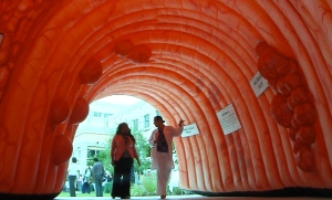 inflatable-colon.jpg